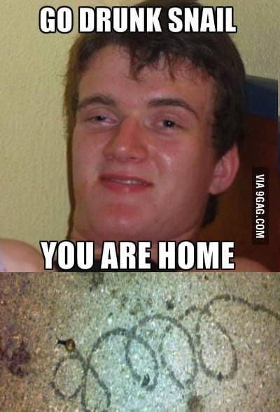 Go drunk snail