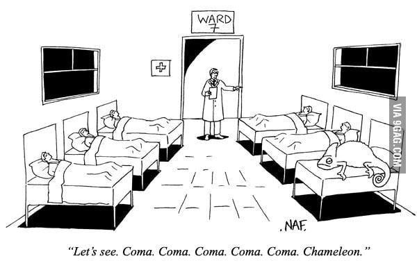 Coma & Chameleon.