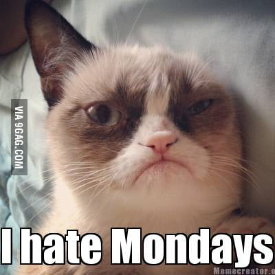 It's Monday....I hate Mondays