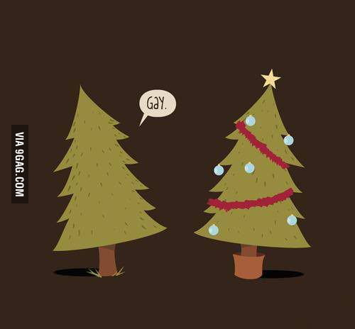 When a tree meets a Christmas tree.