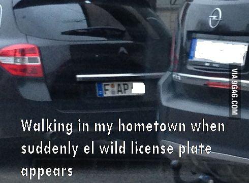 Wild License Plate being Wild