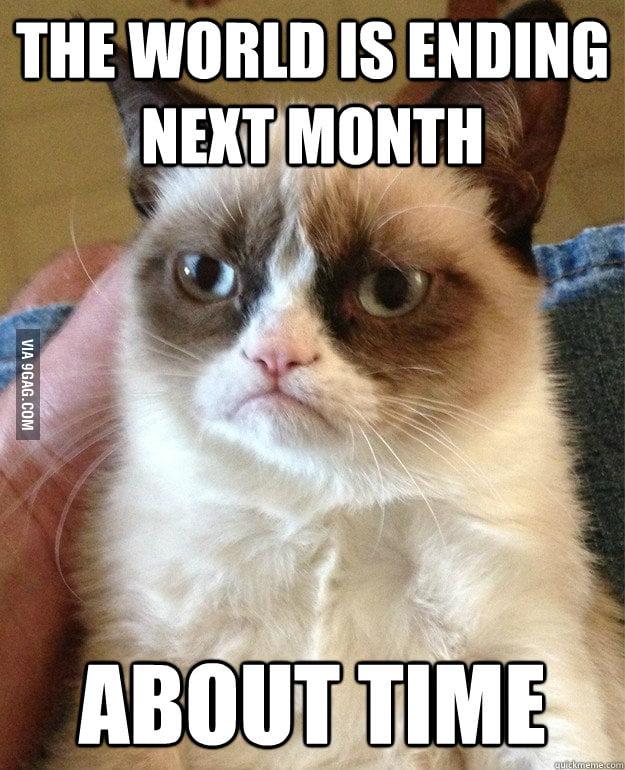 Grumpy cat can't wait.