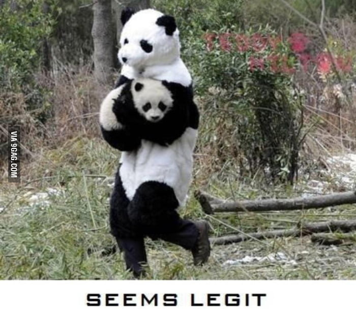 The best way to steal a panda