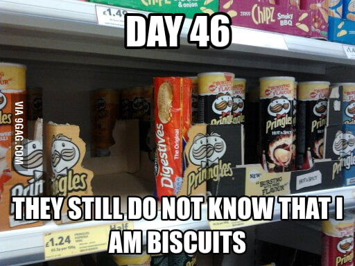 Day 46. They still do not know that I am biscuits.