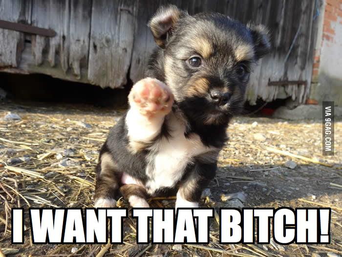 I want that b*tch!