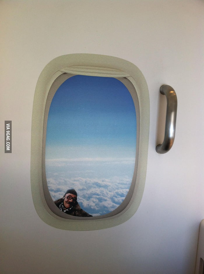Saw this guy outside the window on Air New Zealand.
