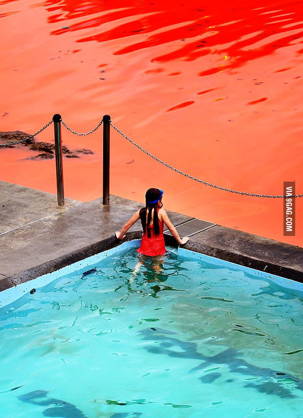 Red Tide.