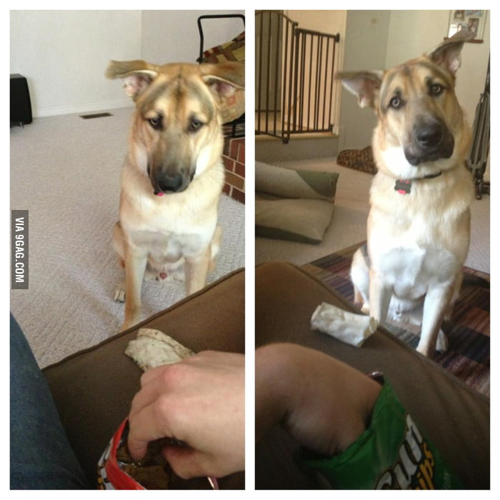 Whenever I eat chips, somebody always wants to trade.