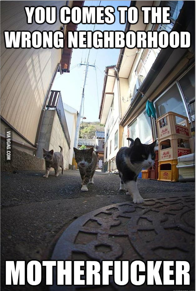 Wrong Neighborhood..