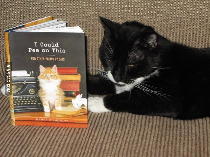 """I could pee on this? I could write a better book."""