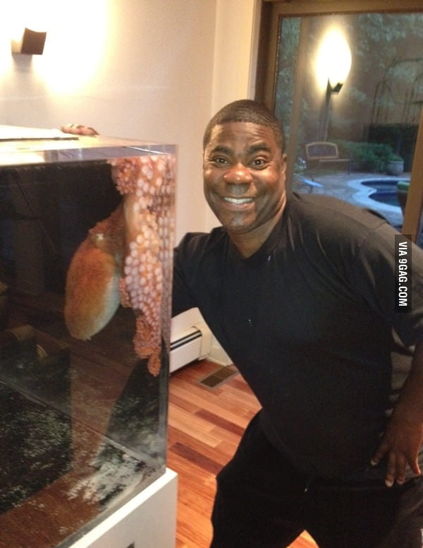 Tracy Morgan and his octopus.