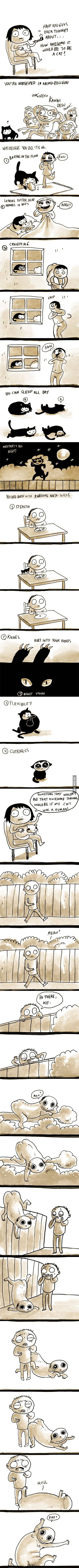 Being a Cat is Awesome
