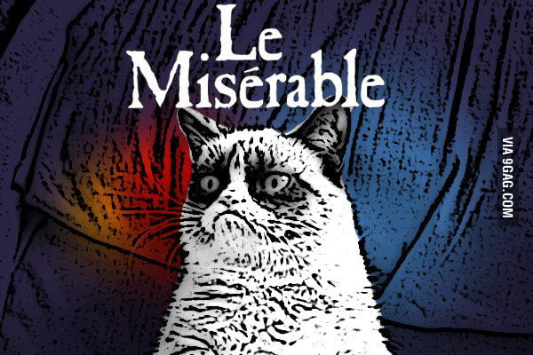 Grumpy Cat's favorite musical: Les Misérables