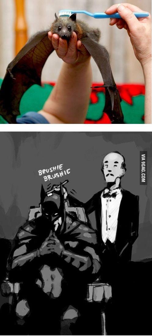 Brushie brushie Master Wayne!