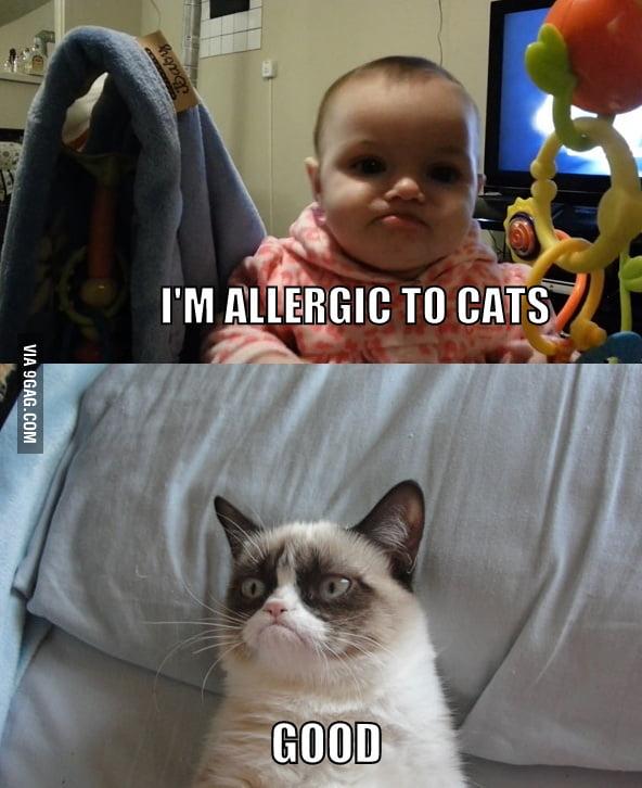 Grumpy Baby meets Grumpy Cat.