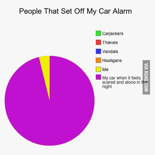 People that set off my car alarm.