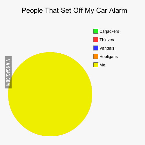 Get a car alarm, they said.