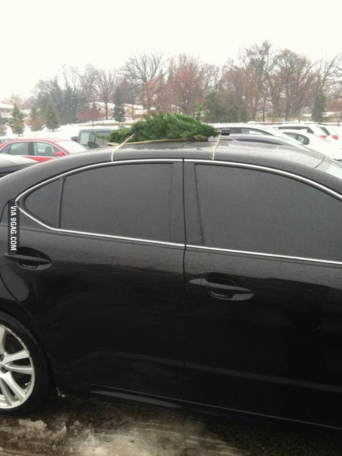 I guess the tree is too big to fit in the car.
