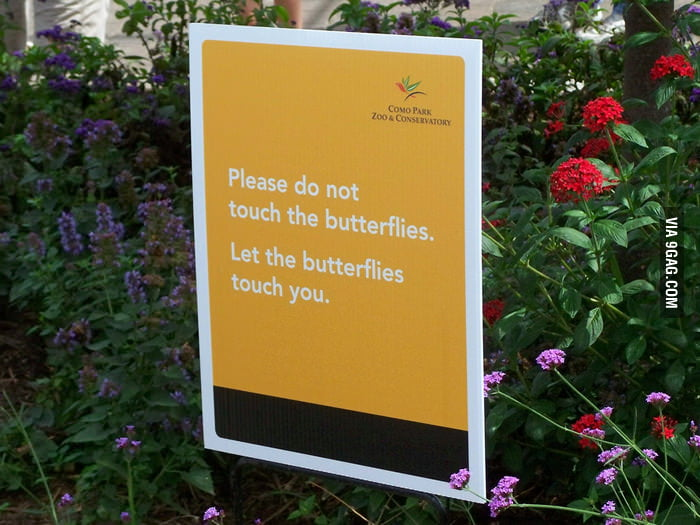 Butterfly Garden has the same rules as a strip club.