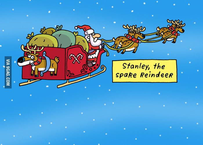 Stanley, the spare reindeer.