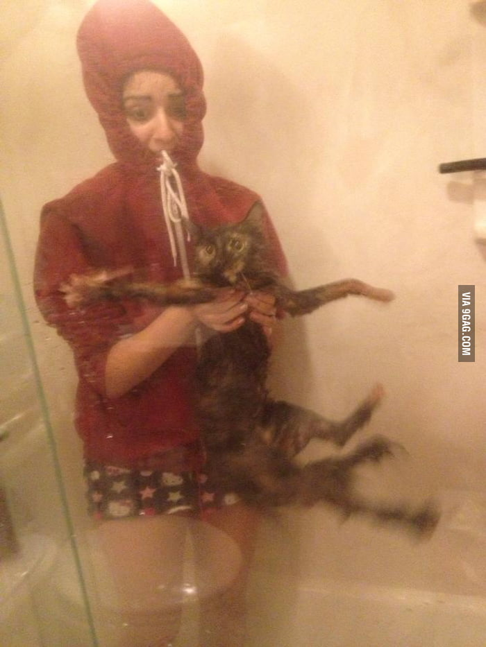 Giving bath to a cat.