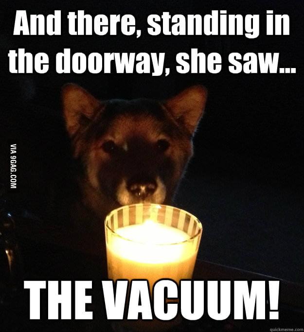Scary Story Dog