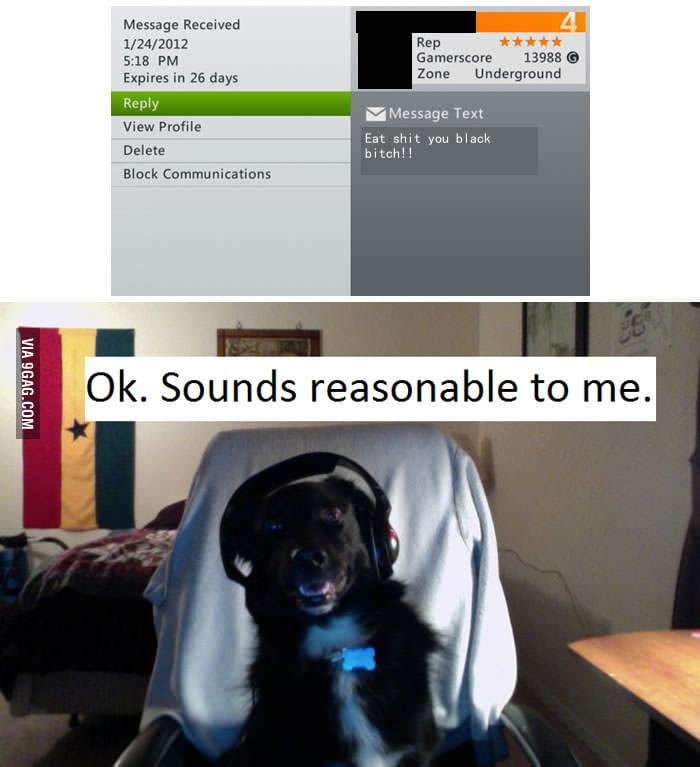 Gamer Dog appreciates
