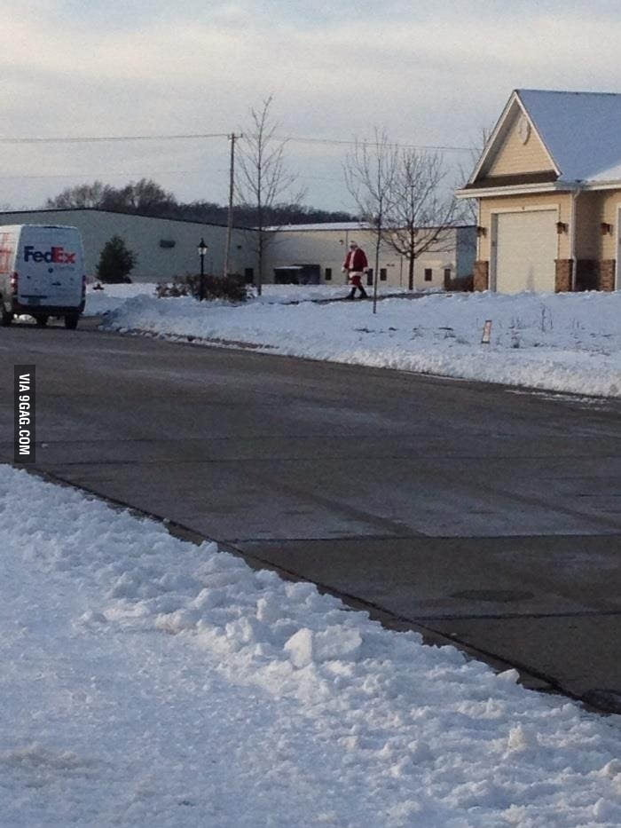 Best FedEx driver ever.