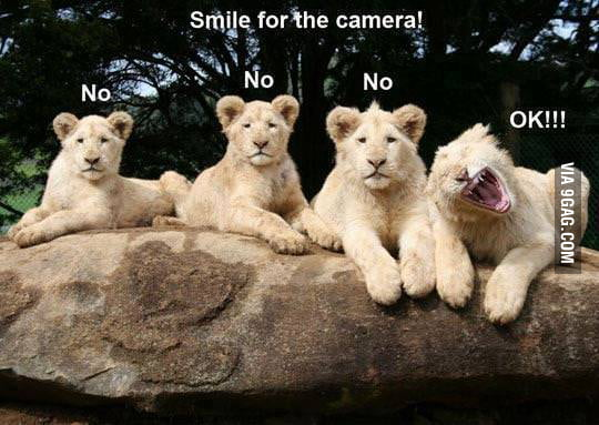 Smile for the camera!