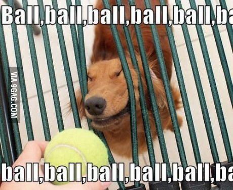 Ball, ball, ball, ball, ball, ball, ball, ball