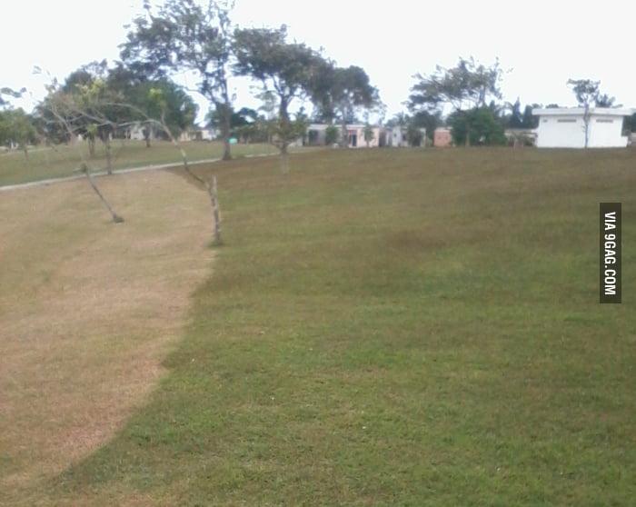 Grass Loading... 85%