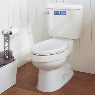 Have you ever noticed that button on nowday toilets?