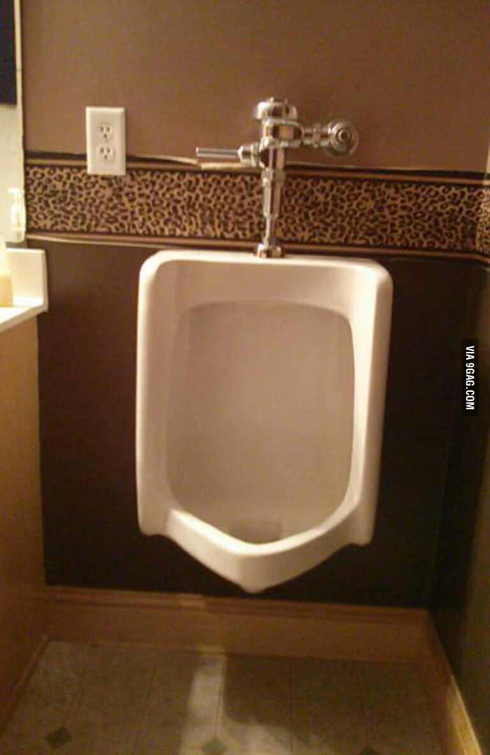 Visited a friend's home. He got urinal at his toilet.