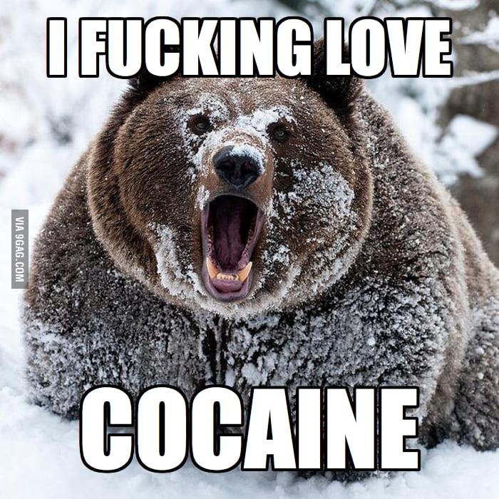 The Original Confession Bear