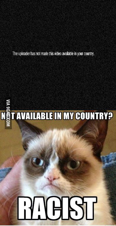 Grumpy cat on youtube