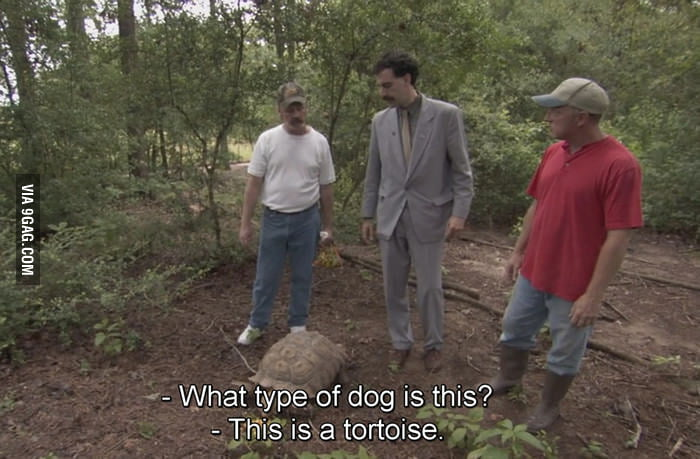 Growing up in a city, this is me every time I visit the zoo.