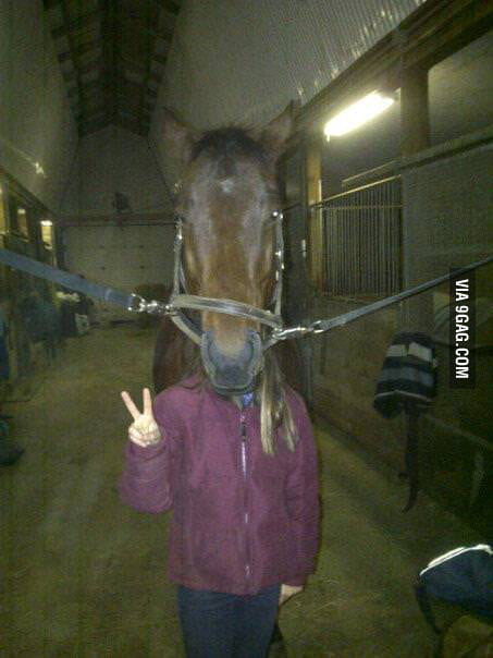 This isn't exactly a horse head mask, but it's close enough.