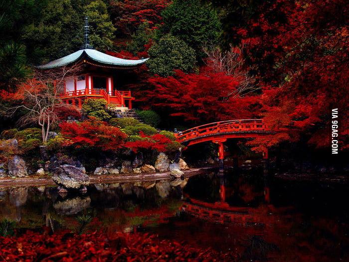 Kyoto, Japan. No Photoshop.