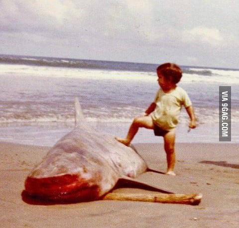 Chuck Norris first time at the beach....