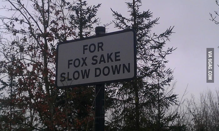 Clever wildlife warning sign seen in the UK.