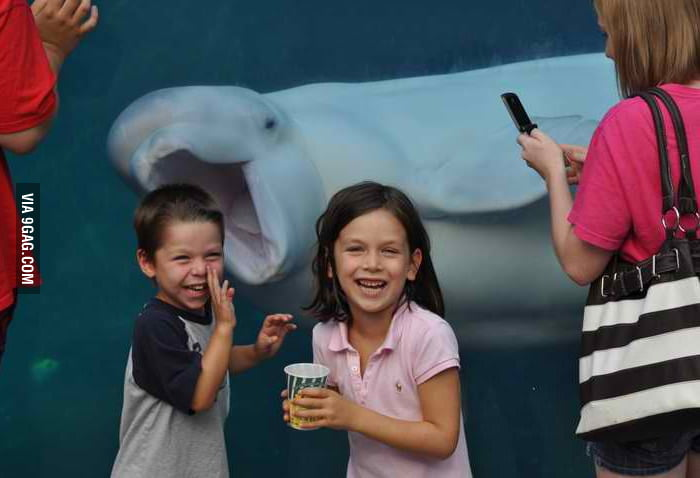 Got photobombed by a beluga at the aquarium.