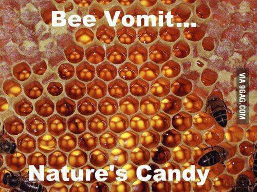 Mmmmm, taste bee vomit.