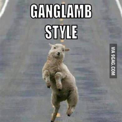 GangLamb styLe (gangnam styLe)