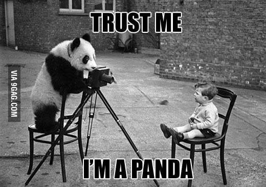 Trust me I'm a panda