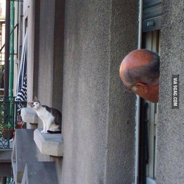 You spy me !?