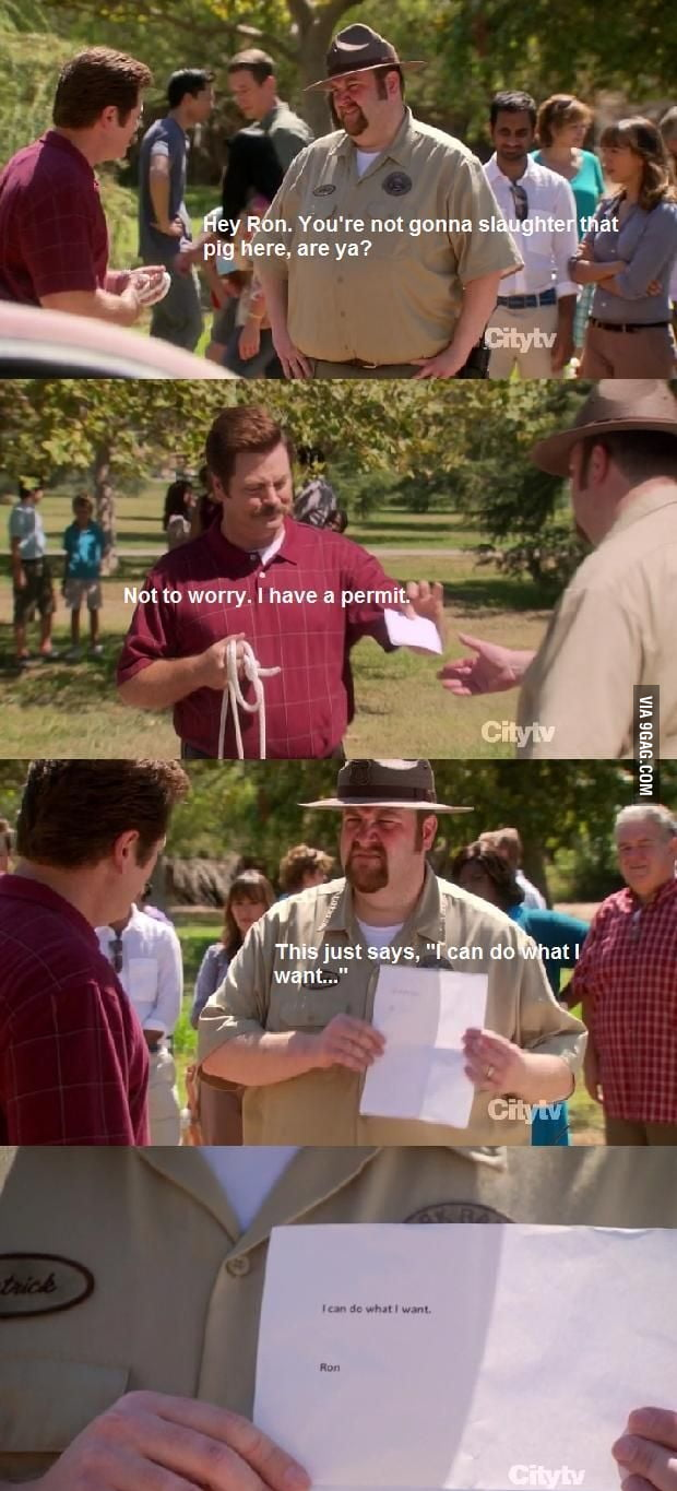 Ron Swanson: Men of Men