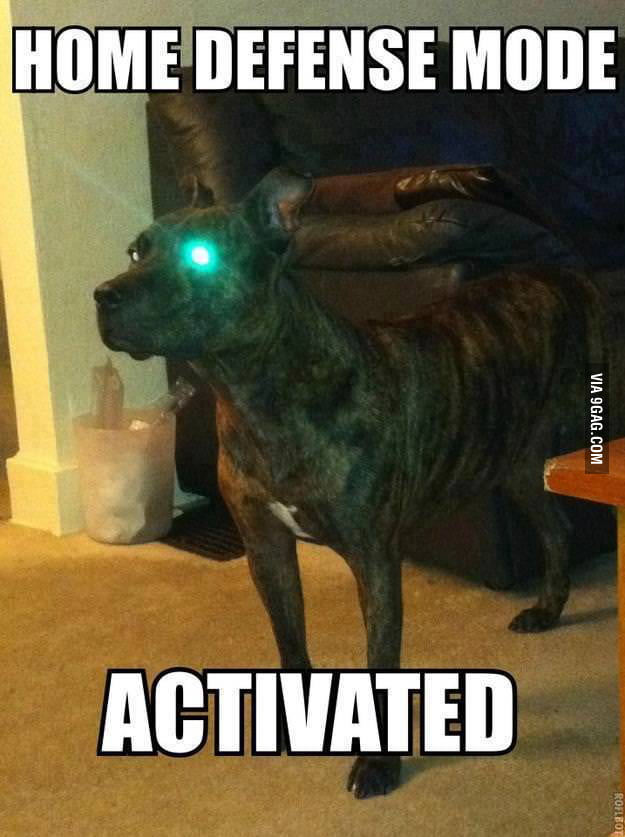 ACTIVATED!