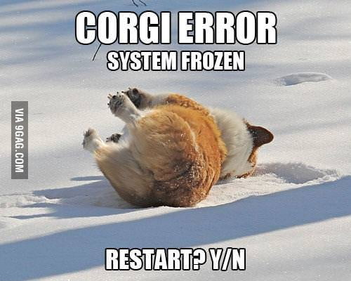 Corgi Error