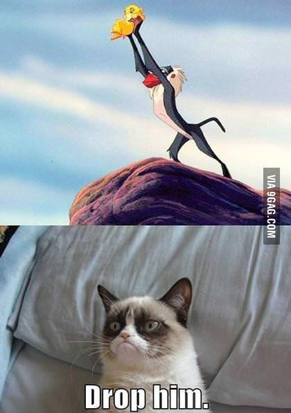 Grumpy cat being jealous