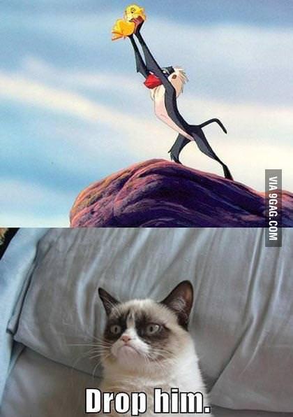 Grumpy cat being jealous